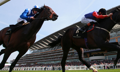 watch live horse racing